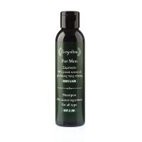 Natürliches Männer Shampoo für alle Haartypen mit Olivenöl, Minze & Limette